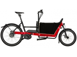 RIESE & MÜLLER Packster 40 Nuvinci