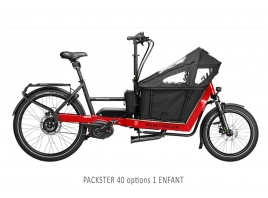 RIESE & MÜLLER - Packster 40 Touring
